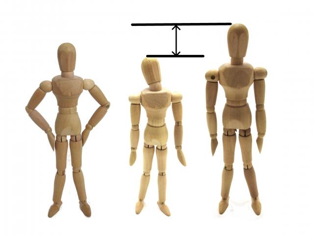 体重 竹内涼真 竹内涼真の筋肉・肉体の画像がヤバイ!最新の体脂肪率や身長体重が気になる【しゃべくり】